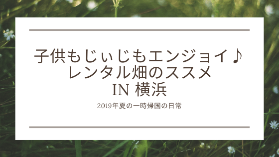 レンタル畑 シェア畑 横浜