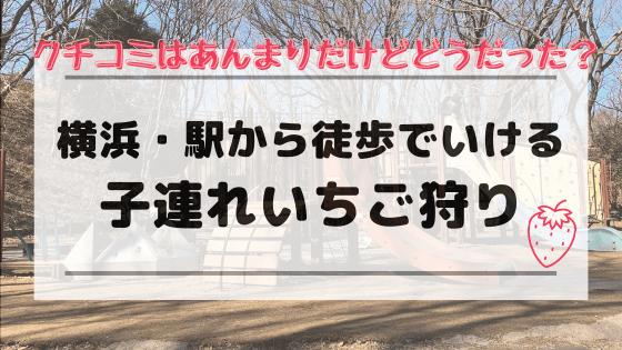 子連れいちご狩り 横浜いちご狩り 二宮いちご園