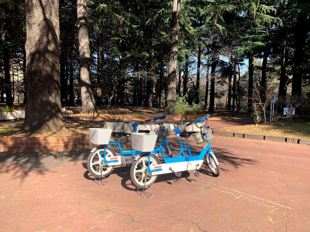代々木公園 子連れ代々木公園 代々木公園のサイクリング